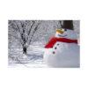 Conjunto boneco neve