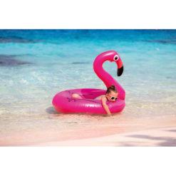 FLAMINGO | Boia Flamingo