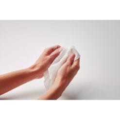 HANDS CLEAN | Toalhas 12x9cm